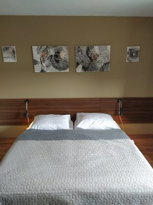 apartmany-adavy-apartman-ilanovo8